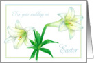 Easter Wedding Congratulations White Trumpet Lily Flowers card