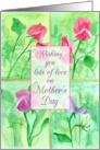 Lots of Love on Mother's Day Sweet Peas Floral Watercolor Painting card