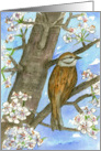 Happy Birthday Sparrow Bird Flowering Tree Nature Painting card