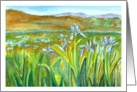 Wild Iris Meadow Landscape Watercolor Painting Blank Note card