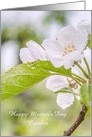 Happy Mother's Day Custom Name Raindrops Flower Photograph card