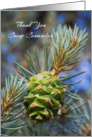 Thank You Camp Counselor Pine Cone Evergreen Tree Photograph card