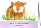 Pet Sitter Thank You Guinea Pig Animal Drawing card