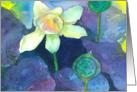 Lotus Flower Watercolor Painting Blank card