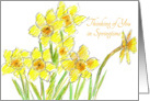 Yellow Daffodil Thinking of You in Springtime card