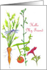 Hello My Friend Garden Vegetable Drawing Dragonfly Tomato card