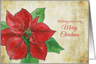 Wishing You A Very Merry Christmas Poinsettia Watercolor Flower card