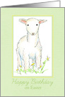 Happy Birthday on Easter Spring Lamb Flower Meadow card