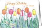 Happy Birthday on Easter Tulips Spring Flower Drawing card