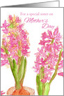 For A Special Sister on Mother's Day Pink Hyacinth Flowers Watercolor card