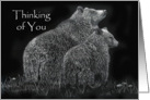 Thinking of You Bears Wildlife Flower Meadow card