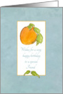 Happy Birthday Friend Apricot Fruit Watercolor Illustration card