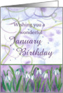 Happy January Birthday White Snowdrops Watercolor card