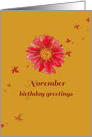 Happy November Birthday Greetings Red Chrysanthemum Art card