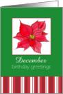 Happy December Birthday Greetings Red Poinsettia Flower card