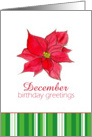 Happy December Birthday Greetings Red Poinsettia Flower card