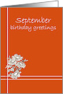Happy September Birthday Greetings White Aster Flower Drawing card