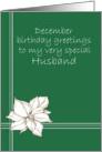 Happy December Birthday Husband Poinsettia Flower Drawing card