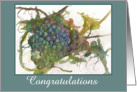 Congratulations Wine Grapes Watercolor Fine Art Painting card