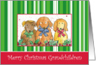 Merry Christmas Grandchildren Dogs Art Watercolor Illustration card