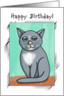 Happy Birthday! Folk Art, Smiling Gray Cat, For Anyone card