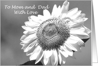 Thank You Mom and Dad Card -- Black and White Mammoth Sunflower card