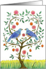 Blue Doves Wedding Congratz card