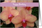 Happy Birthday - orchid card