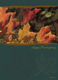 Thanksgiving Card with Painting of Colorful Autumn Leaves Greeting Card