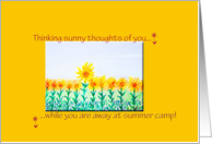 Thinking of you...away at summer camp card