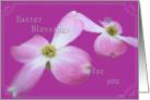 Dogwood Easter Blessings card