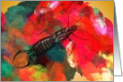 Earwig Pincher Bug Color Patch Card