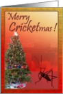 Merry Cricketmas Christmas Card