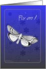 Winter Holiday -- Fly On card