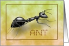 Ant Rampant card