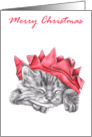Christmas Kitty 4 card