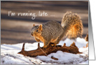 Happy Belated Birthday - squirrel running late card