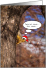 Merry Christmas - squirrel in Santa hat on tree card