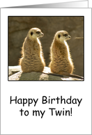 Meerkats - Happy Birthday to my Twin card