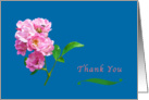 Thank You, Pink Garden Roses on Blue card