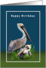 Birthday, From Couple, Two Brown Pelicans card