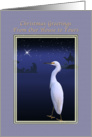 Christmas, From House to Yours, Religious, Snowy Egret card