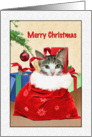 Merry Christmas, Cat in a Sack, Presents card
