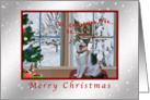 Christmas, Singing Cat, Snow, Humor card