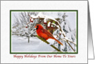 Christmas, From Our Home To Yours, Cardinal Bird, Snow card