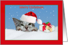 Christmas Card With Cat in a Hat card