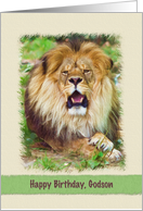Birthday, Godson, Lion card
