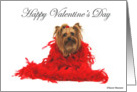 Yorkie Love You card
