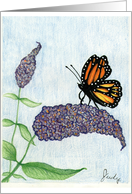 Monarch on a Butterfly Bush card