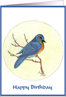 Happy Birthday Spring Bluebird card